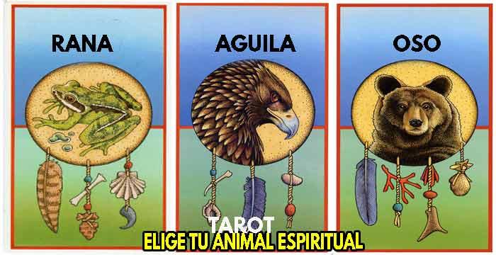 Elige tu carta de tarot animal espiritual